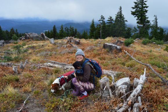 Mt. Hood with Dogs: One of the Seven Wonders
